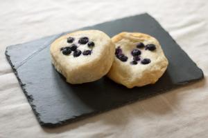 blueberrydanish